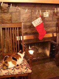 Bea loves the fireplace
