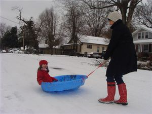 Mama pulling the sled