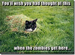 funny-pictures-cat-hides-from-zombies
