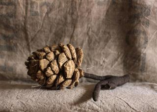 Fabric_pinecone
