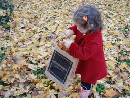 Collecting_leaves